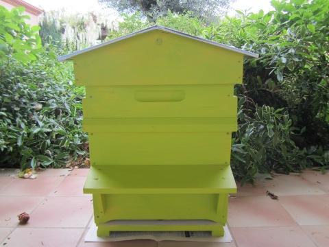 ruche peinte