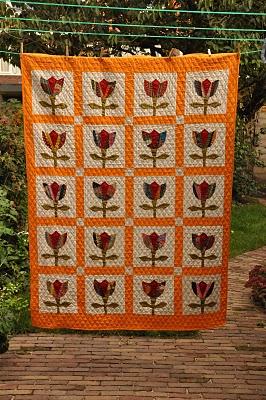 tulipd 005