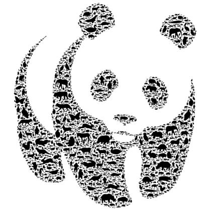 wp_WWF_Panda