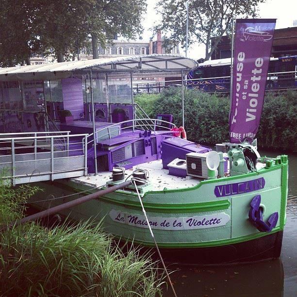 La Maison de la Violette Toulouse
