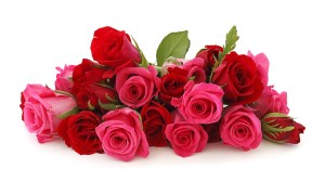 Red-Rose-Pink-Rose-Flowers-Bouquet-HD-Wallpaper