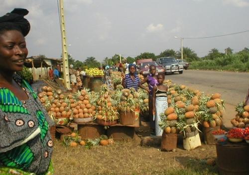 ananas RCI
