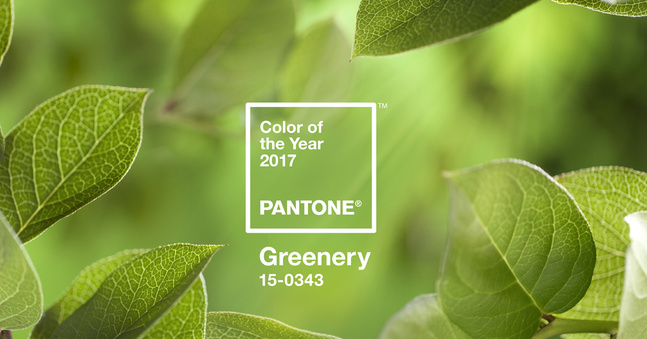 la_couleur_pantone_de_l_ann__e_2017_6421-jpeg_north_647x_white